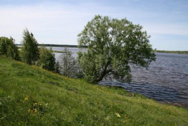 Вид на Волгу с участка №35